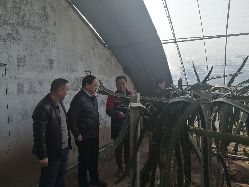 金文調研科技農業.jpg
